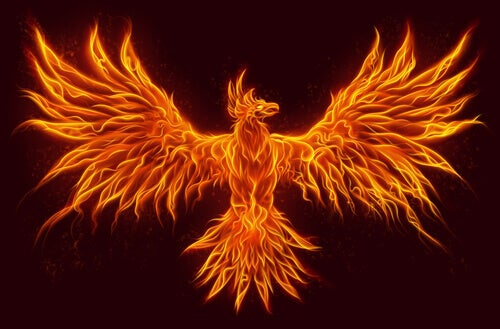 Phoenixes are mythological animals.