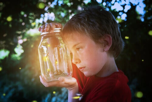 Everything You Wanted to Know About Fireflies