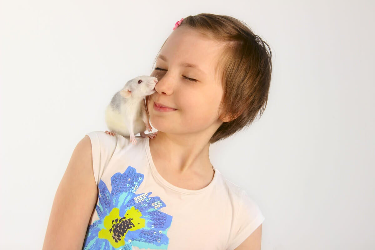 A young girl playing with a rat on her shoulder.