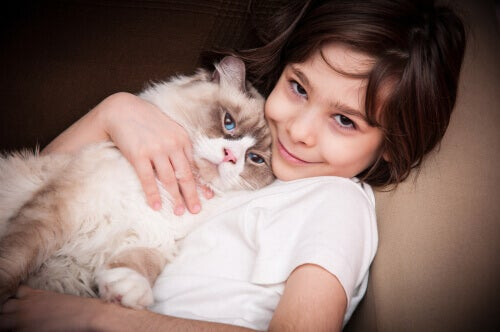 Using Cats as Therapy for Children with Autism
