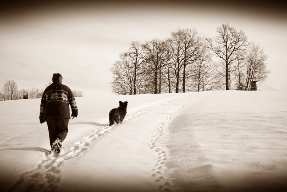 A woman walking her dog in the snow.