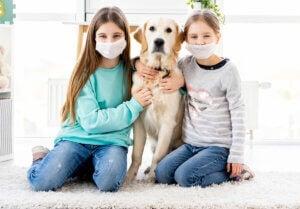 Girls wearing masks hugging a dog.