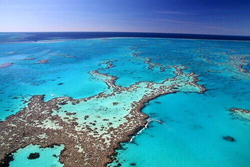 Welcome to Australia's Great Barrier Reef.