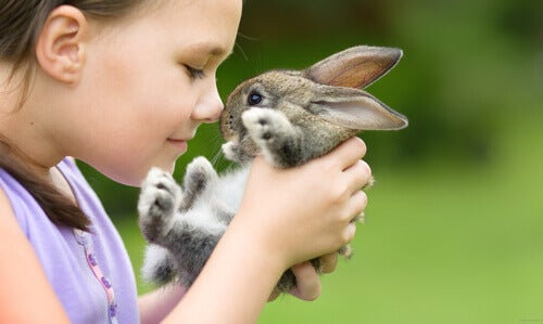 Activities with rabbits for children.