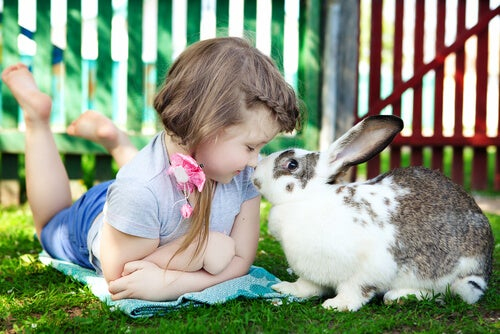 Girl playing with a rabbit.