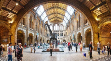 The Best 5 Natural History Museums
