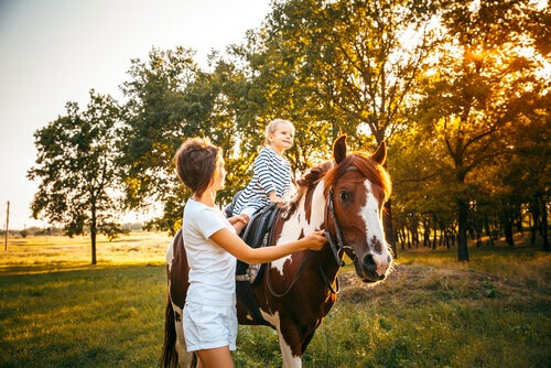The Benefits of Equine-Assisted Therapy for People with Disabilities