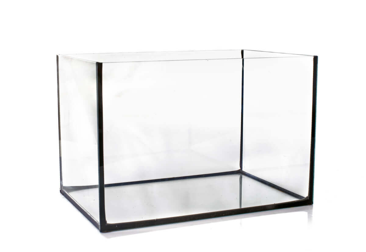 An empty glass aquarium.