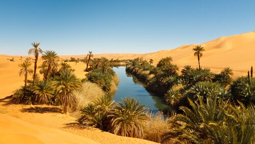 A river in the middle of the desert.