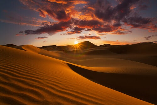 Interesting Facts About the Sahara Desert