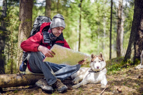 Things to Consider When Going Hiking with Your Pet