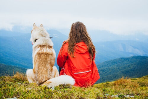 A woman and a dog enjoying the view.