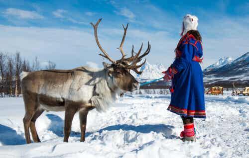 The Sami: The Last Reindeer Herders