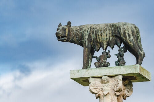 Discover Ancient Roman Animals