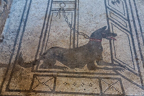 A mosaic of a Roman dog.