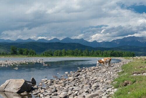 Tunkinsky National Park is also known as Tunka National Park.