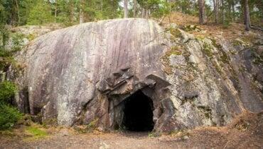 6 Animals Found in Movile Cave in Romania