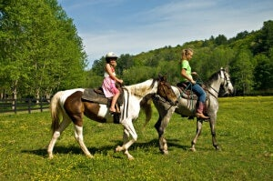 Even young children can learn to ride horses.