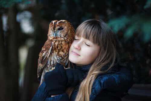 Can I Keep an Owl as a Pet?