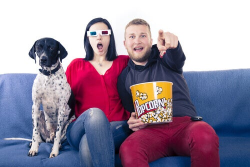 A couple and their dog watch a movie.