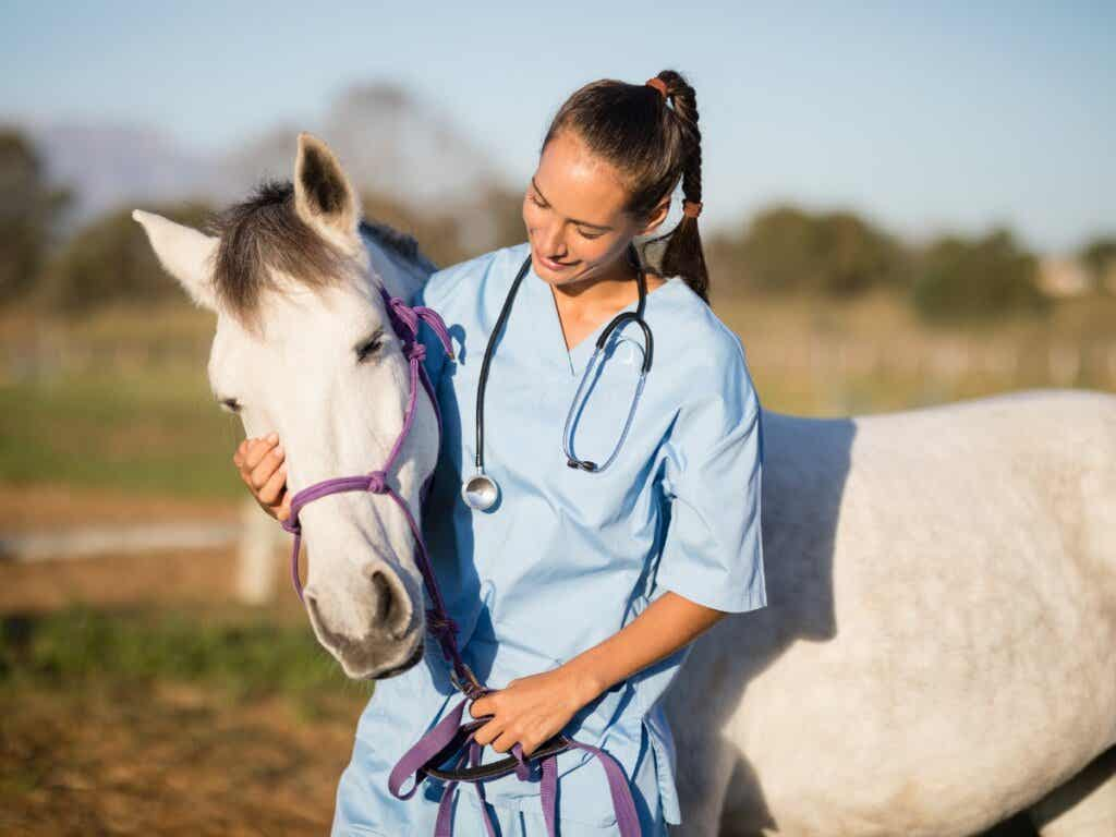 What Is Equine Influenza?